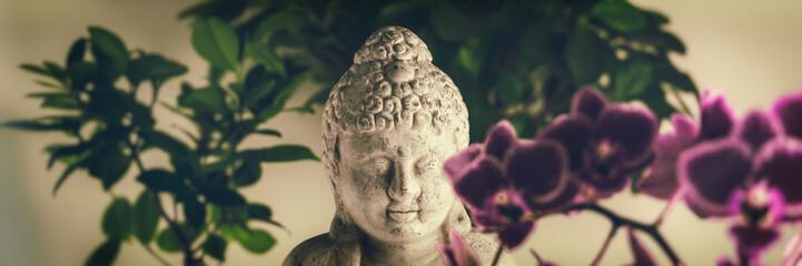 Buddha Panorama