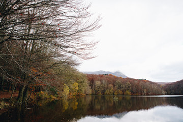 Lake and Trees Landscape in Autumn