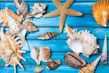 beautiful summer background with sea shells and starfish on blue wooden boards