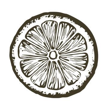 Orange Slice, icon illustration isolated on white background.