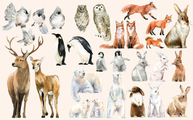 Hand-drawn wildlife set watercolor style Fotomurales