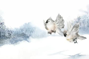 Wall Mural - Tufted titmouse bird in wintertime watercolor vector