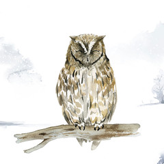 Canvas Prints Owls cartoon Owl in wintertime watercolor style vector