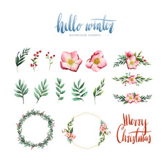 Wall Mural - Watercolor winter bloom and elements vector