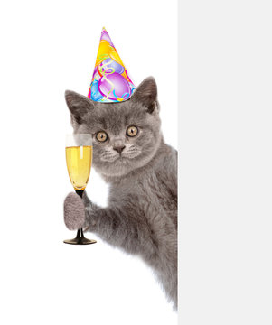 cat in birthday hat holding glass of champagne behind empty white banner. isolated on white background