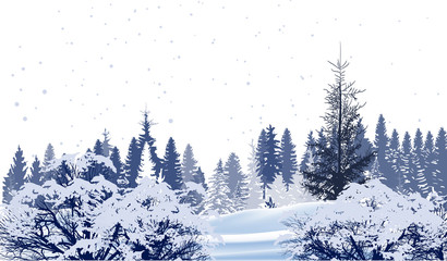 forest in snow winter white illustration