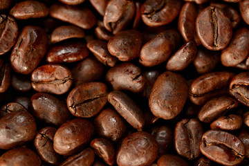 Roasted brown coffee beans pattern, background, top view