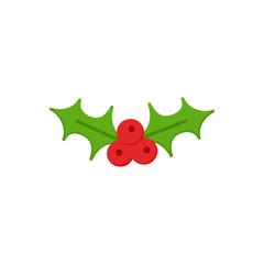 Christmas mistletoe vector illustration icon. Festive, seasonal, holiday xmas mistletoe plant symbol, isolated.