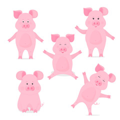 A set of cute piggy cartoon characters in different poses, sitting, standing, hand up and down. Funny pig. The symbol of the Chinese New Year