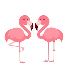pink flamingo illustration