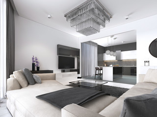 Spacious apartment interior studio with white wall scandinavian style, dining and kitchen.