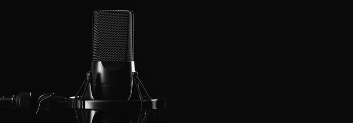 Professional studio microphone isolated on black Wall mural