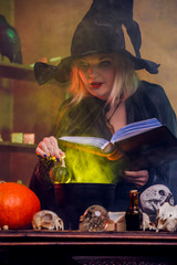 Picture of young witch in black hat with book brewing potion in pot