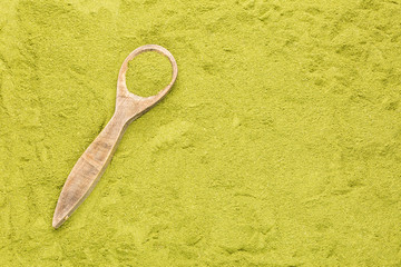 Moringa nutritional plant - Moringa oleifera. Text space