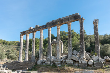 Euromos ruins, located just off the Soke-Milas road, are frequently overlooked by travelers who do not realize that an olive grove hides one of the best preserved ancient temples.