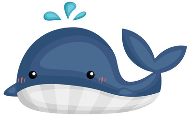 a vector of a cute and adorable whale