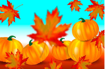 Bright orange pumpkins and falling red maple leaves on a blue autumn background. Seasonal banner with copy space for your text. Vector illustration