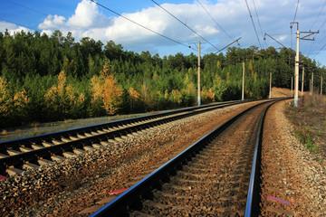 Railway among trees