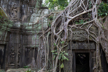 Ta Prohm Angkor Wat Cambodia. The ancient temple of Ta Prohm at Angkor Wat, Cambodia where roots of the jungle trees intertwine with the masonry of these ancient structures producing surreal world.