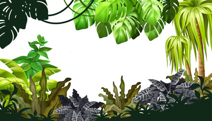 Background jungle with palm trees and lianas. Landscape with tropical exotic plants. Vector illustration with space for text.