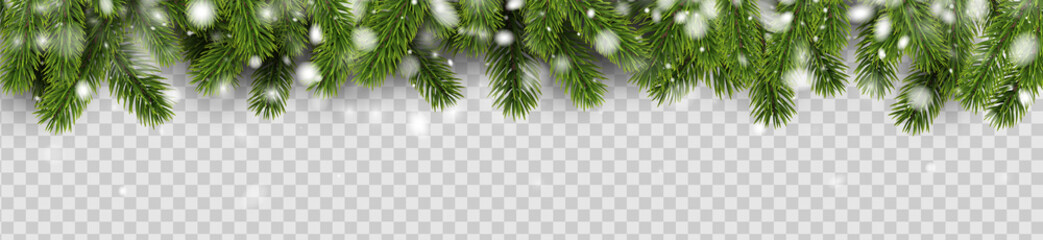 Banner with green fir branches and snow for winter, Christmas and New Year design. Wall mural