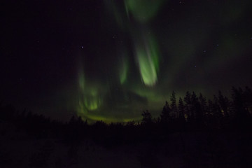 Northern lights in lappland