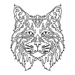 Face of cat in line art style, vector illistration isolated on white background
