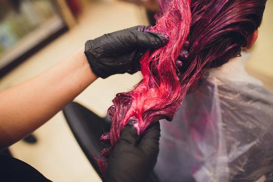 Beautician dying hair of woman. Girl in beauty salon.