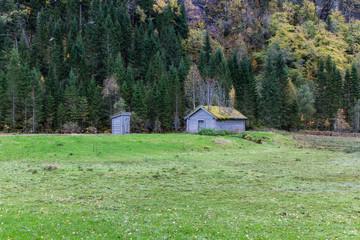 Zwei Holzhütten mit intensiv bewachsenem Gründach
