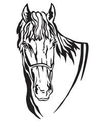 Decorative portrait of horse vector illustration 5