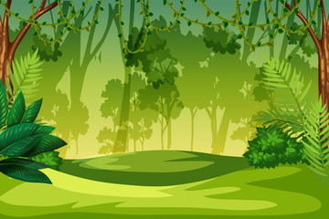 A green jungle landscape