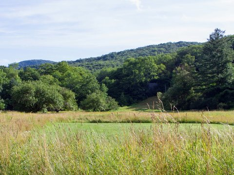 country landscape in Berkshires