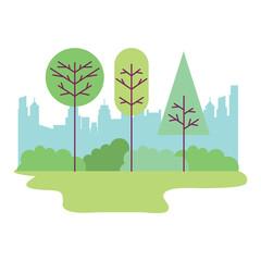 park city landscape trees bushes