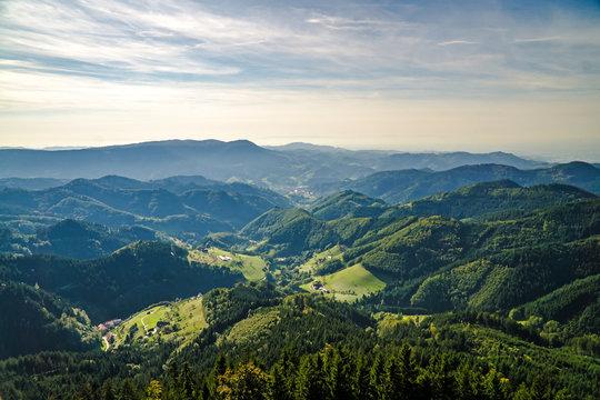 Blackforest in Germany