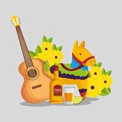 guitar with tequila and donkey to day of the dead celebration