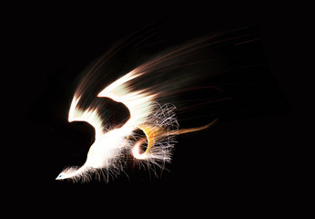 Phoenix made from composite of fireworks images