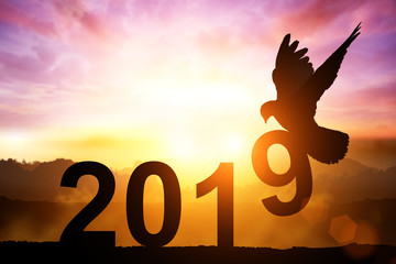 Silhouette of Dove Carry Number 9 Text for Happy new year 2019 Concept.