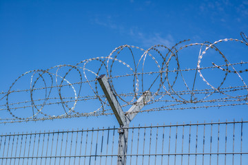 Stacheldraht vor blauem Himmel NATO-Draht Bandstacheldraht Grenze Zaun