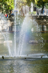 Poster Fontaine Fontaine,jardin de la fontaine à Nîmes.