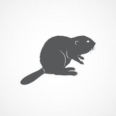 Beaver flat icon