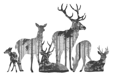 Wall Mural - herd of deer silhouette. Inside is a pine forest. Vector illustration, isolated object.