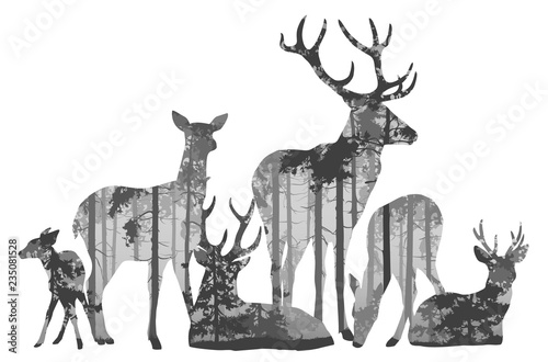 Wall mural herd of deer silhouette. Inside is a pine forest. Vector illustration, isolated object.