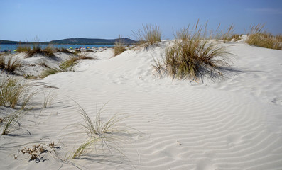 Sardinia, Italy, the sand dune along the shore with the tourists on the beach in the background, on a sunny day