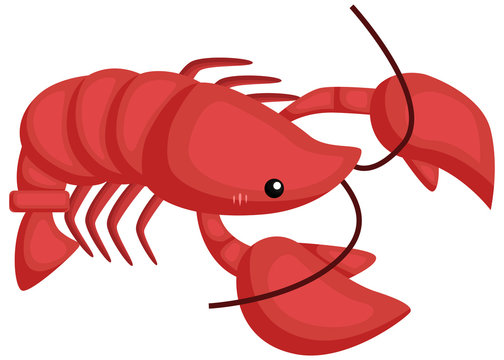 a vector of a cute and adorable lobster