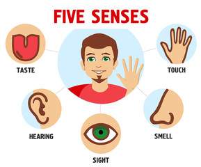 Five human feelings. Mouth or lips, hand and nose, eye and ear icons, sight and smell, touch, hearing and taste senses vector illustration