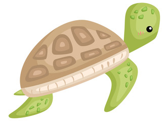 a vector of a cute and adorable turtle