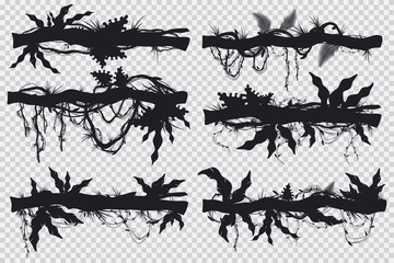 Jungle hanging lianas and vines on a branch. Vector black silhouette set isolated on transparent background.