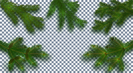 Christmas, New Year. Set Realistic green tree branch and its shadow. Against the background of the checkered. illustration