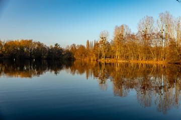 étang en automne avec les arbres se reflétant dans l'eau