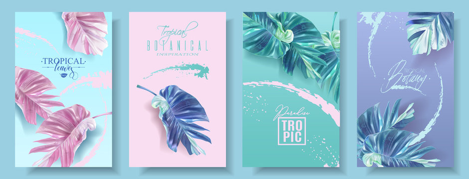 Vector banners set of alocasia tropic leaf